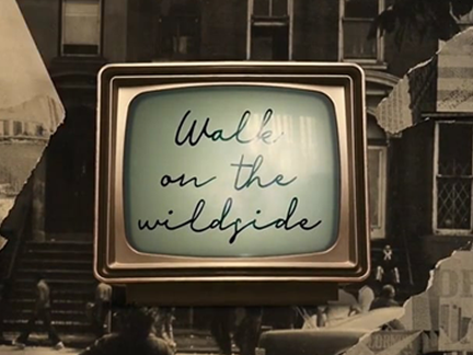 Suzanne Vega – Walk On The Wildside